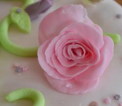 Princesses-rose