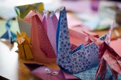 Turtles-origami